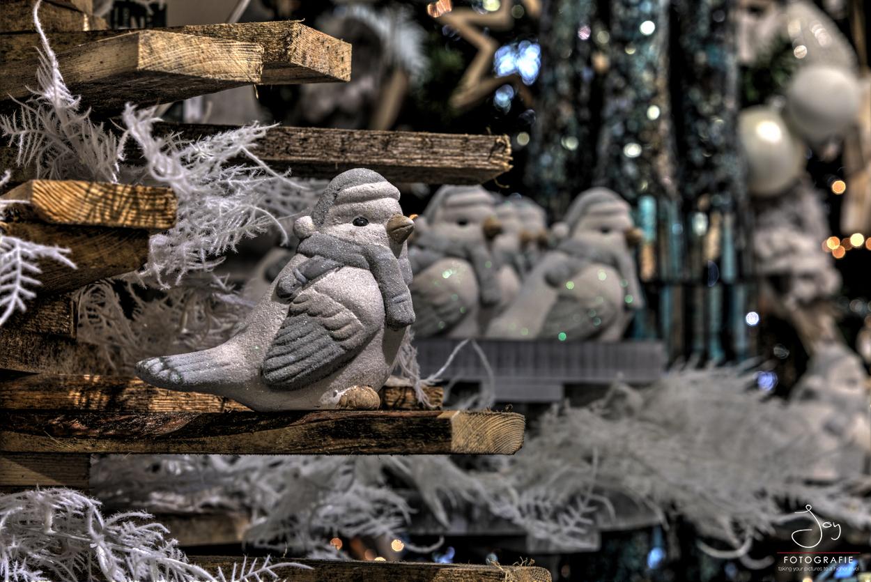 Weihnachtsdeko Venlo.Weihnachtsmarkt Venlo Gartencenter Leurs Venlo Holland