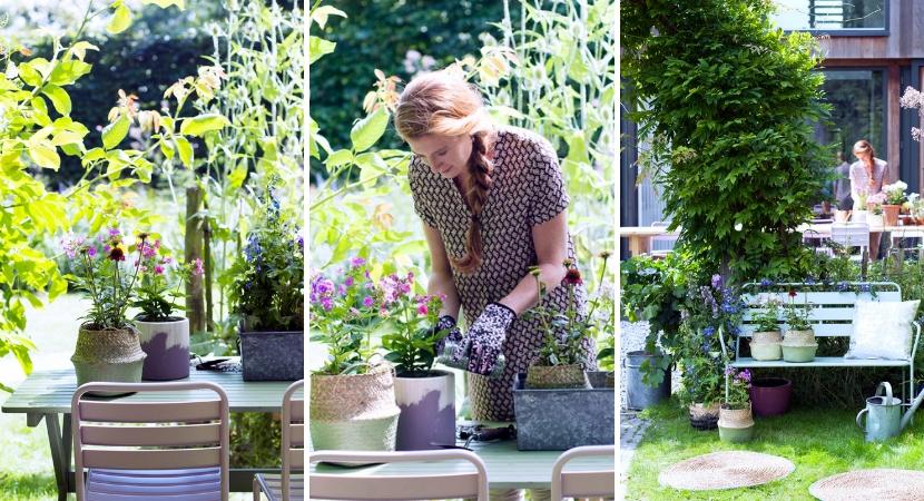 Vaste planten_Tuincentrum Leurs