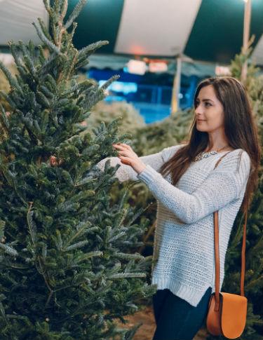 Weihnachtsbaum kaufen gartencenter Leurs Venlo