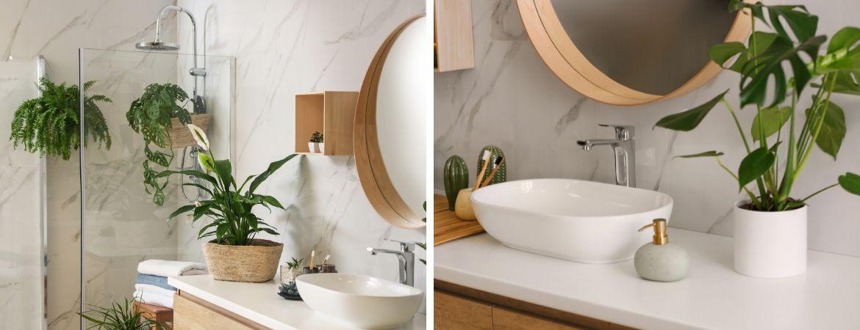 Gartencenter Leurs | Venlo | Pflanzen für das Badezimmer