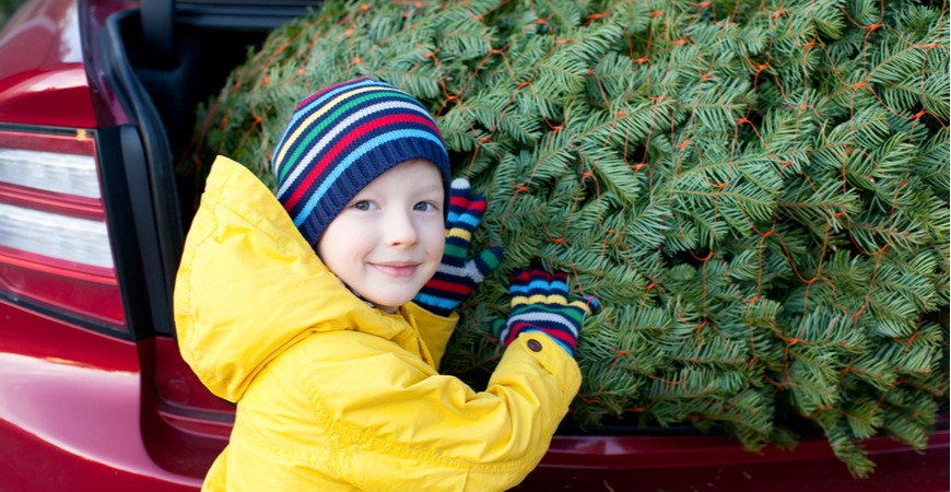Tuincentrum Leurs | Kerstboomstandaard