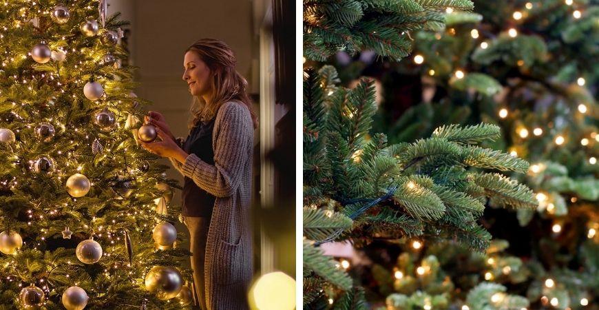 Tuincentrum Leurs | Venlo | Kerstverlichting | Kerstboomverlichting